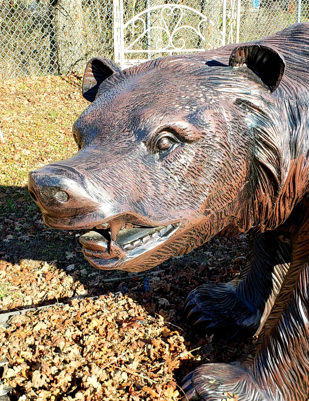 Grizzly Bear Walking Statue Face